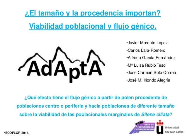 ¿El tamaño y la procedencia importan? Viabilidad poblacional y flujo génico. •Javier Morente López •Carlos Lara-Romero •Al...