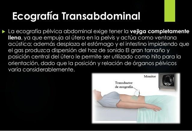 Ecografia Transvaginal Image Mag