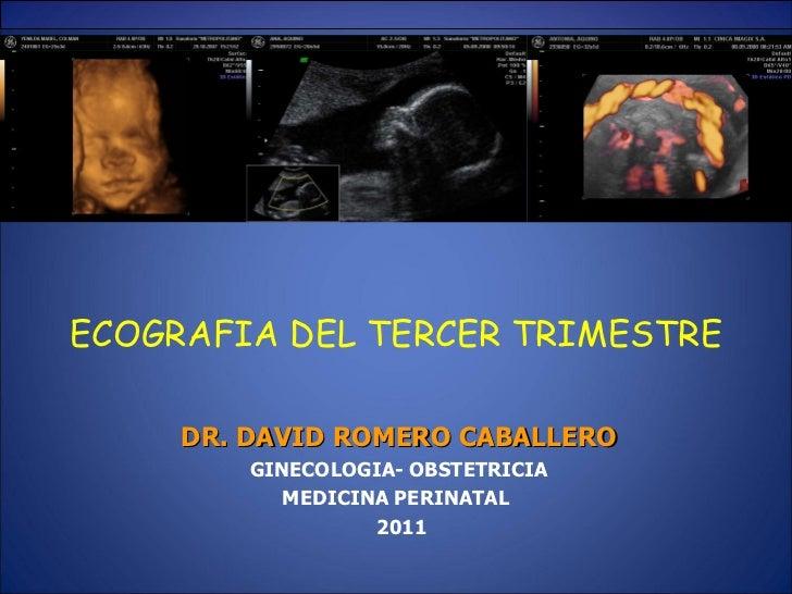 ecografia obstetrica pdf libro