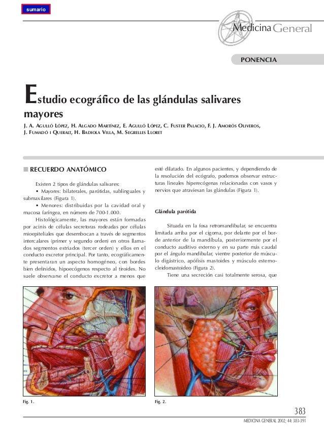 Ecografia de glandular