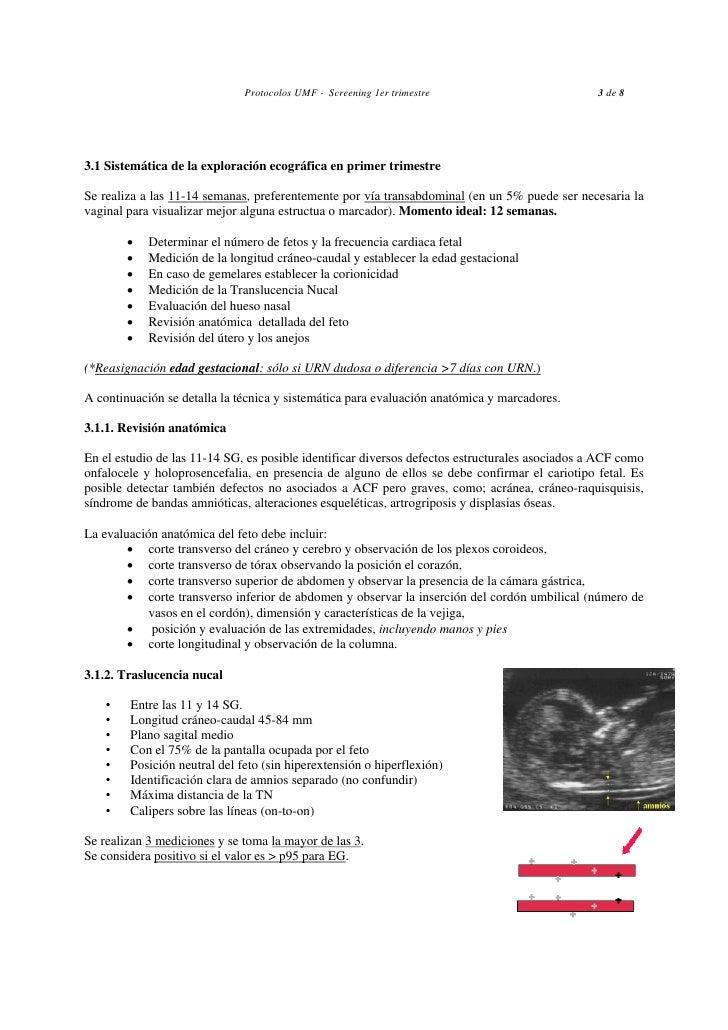 Ecografia en Obstetricia Hgc