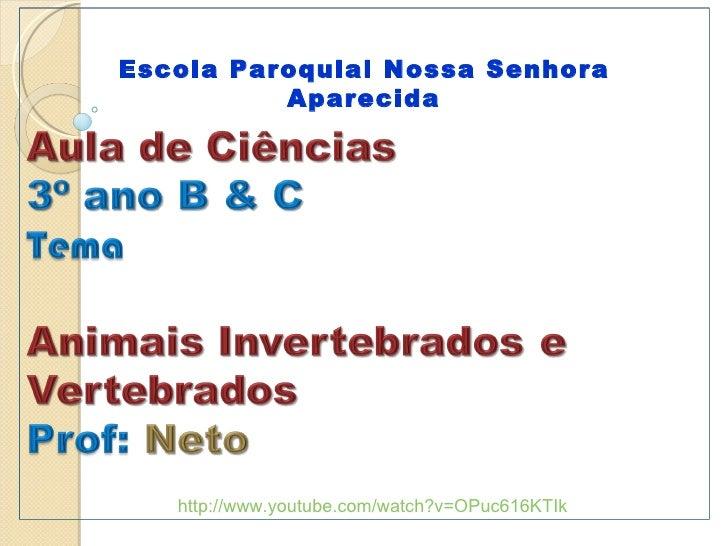 http://www.youtube.com/watch?v=OPuc616KTIk Escola Paroquial Nossa Senhora Aparecida