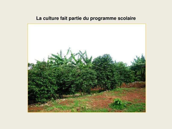 La culture fait partie du programme scolaire