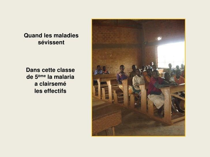 Quand les maladies     sévissent    Dans cette classe de 5ème la malaria    a clairsemé    les effectifs
