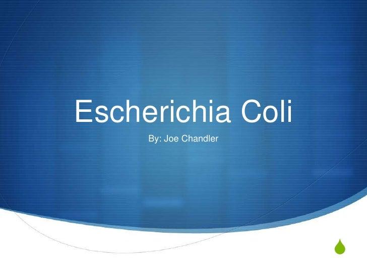 Escherichia Coli     By: Joe Chandler                        S
