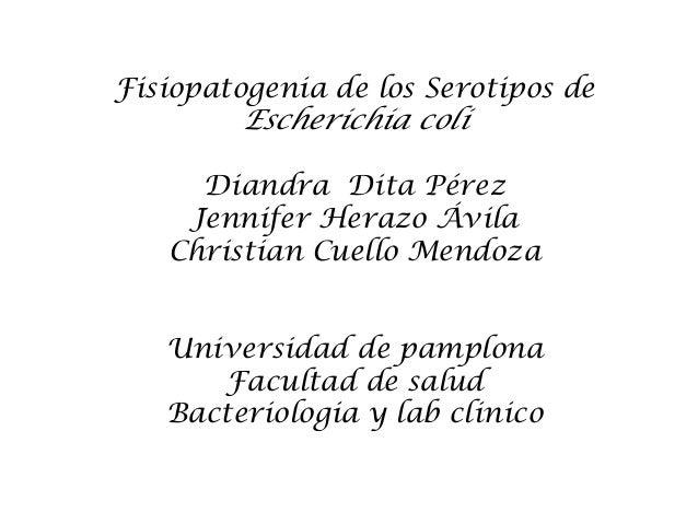 Fisiopatogenia de los Serotipos deEscherichia coliDiandra Dita PérezJennifer Herazo ÁvilaChristian Cuello MendozaUniversid...