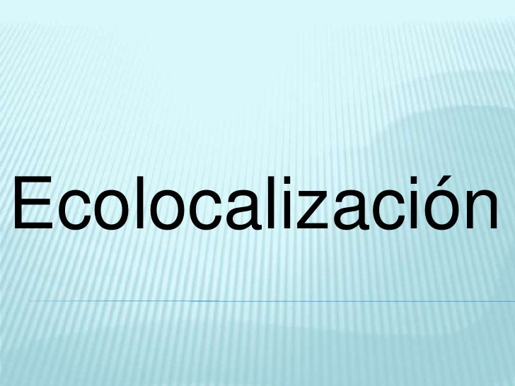 Ecolocalización<br />