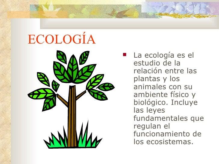 ECOLOGÍA <ul><li>La ecología es el estudio de la relación entre las plantas y los animales con su ambiente físico y biológ...