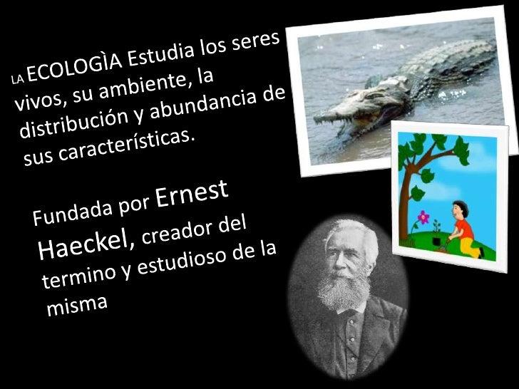 Ecologia Slide 2