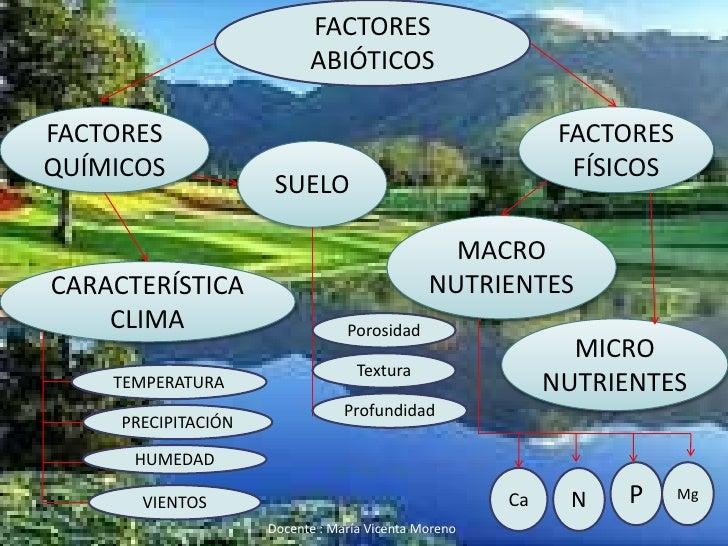 Ecologia for Componentes quimicos del suelo