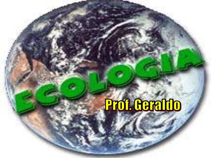 Prof. Geraldo<br />