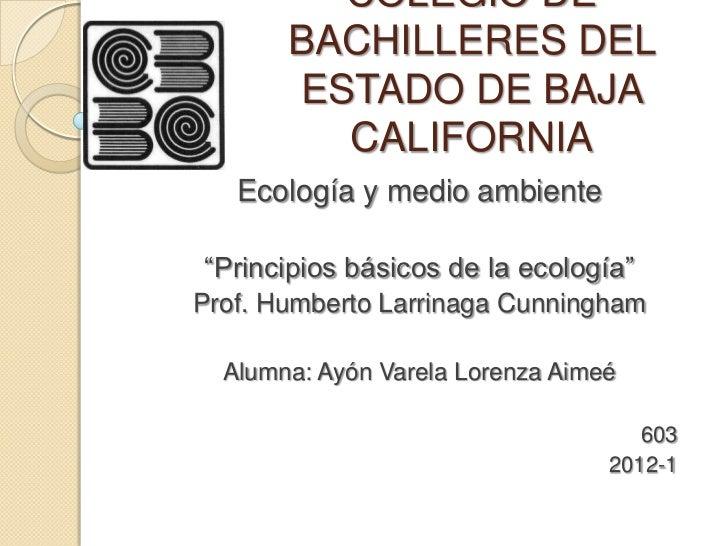 """COLEGIO DE       BACHILLERES DEL       ESTADO DE BAJA         CALIFORNIA   Ecología y medio ambiente""""Principios básicos de..."""