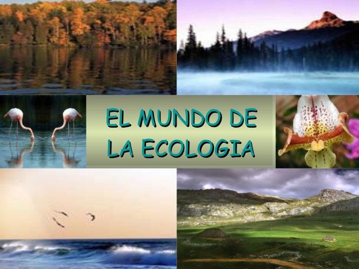 EL MUNDO DE LA ECOLOGIA