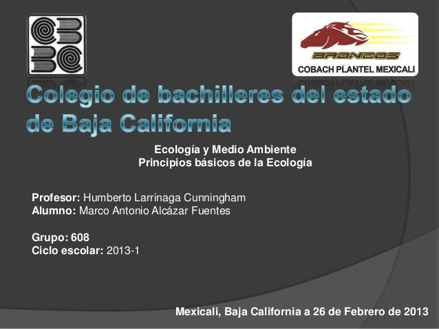 Ecología y Medio Ambiente                    Principios básicos de la EcologíaProfesor: Humberto Larrinaga CunninghamAlumn...