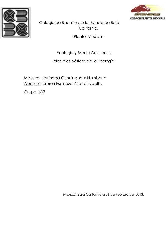 """Colegio de Bachilleres del Estado de Baja                           California.                        """"Plantel Mexicali"""" ..."""