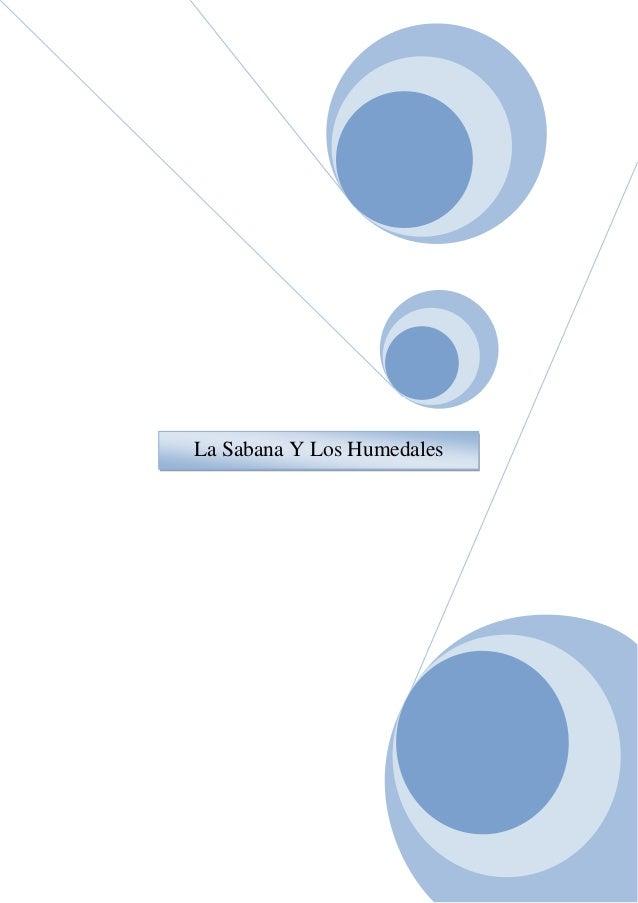 La Sabana Y Los Humedales