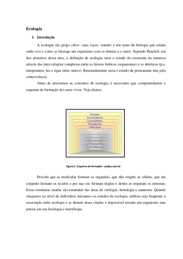 Ecologia De Individuos A Ecossistemas Portugues Pdf