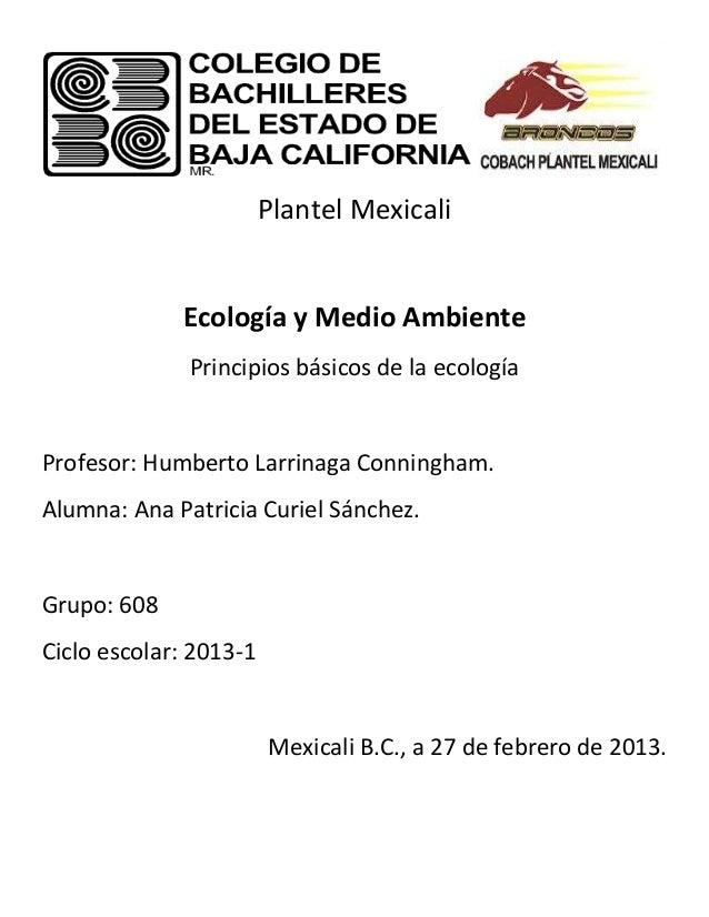 Plantel Mexicali             Ecología y Medio Ambiente              Principios básicos de la ecologíaProfesor: Humberto La...