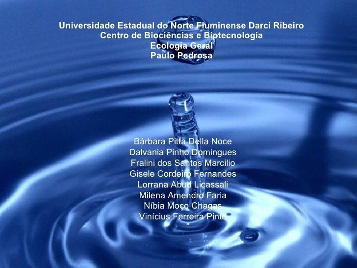 Universidade Estadual do Norte Fluminense Darci Ribeiro Centro de Biociências e Biotecnologia Ecologia Geral Paulo Pedrosa...