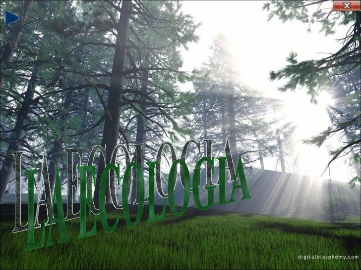 LA E COLOGI A    Es el estudio del medio ambiente, la cual    mayormente se practica por medio del    cuidado de la natura...