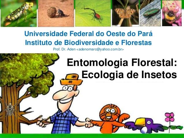 HOME   CONTEÚDO   REFERÊNCIA    ACTIVITY      LINKS             UFOPA       Universidade Federal do Oeste do Pará       In...