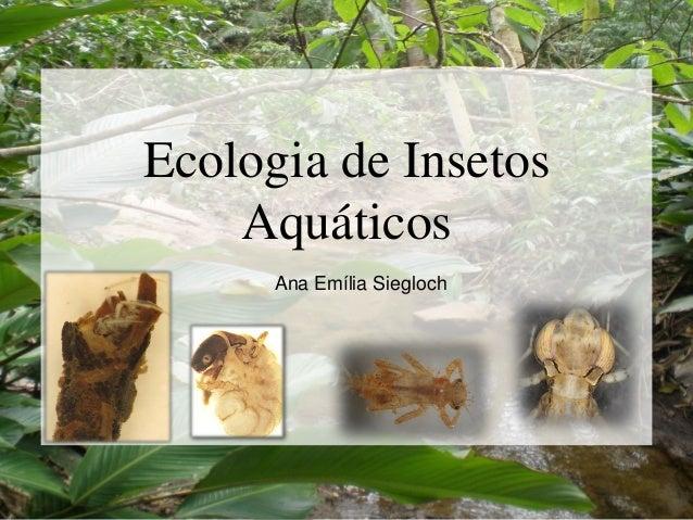 Ecologia de Insetos Aquáticos Ana Emília Siegloch