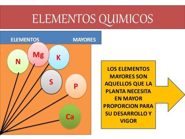 Ecologia del suelo for Componentes quimicos del suelo