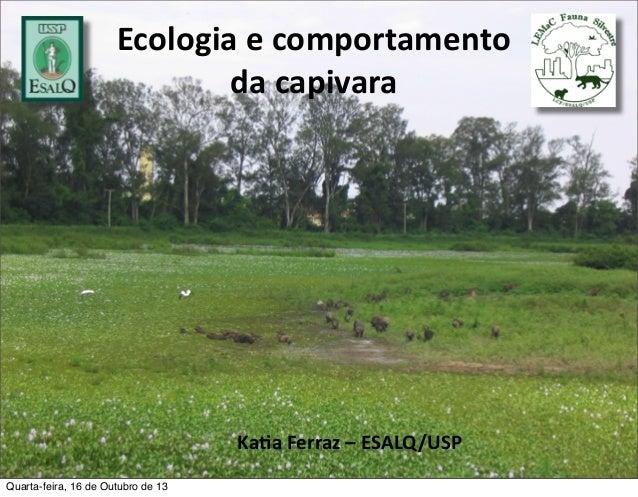 Ecologia  e  comportamento                   da  capivara  Ka#a  Ferraz  –  ESALQ/USP Quarta...