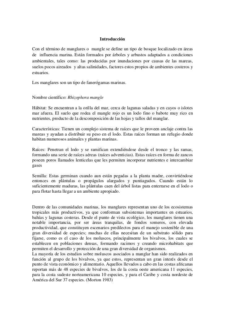 Organismos asociados a raices de manglares en Isla Larga, Mochima. edo.Sucre. Venezuela Slide 2