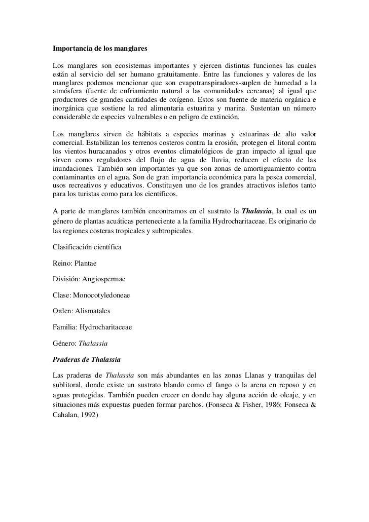 Organismos asociados a raices de manglares en Isla Larga, Mochima. edo.Sucre. Venezuela Slide 3