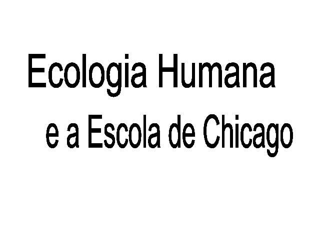 • Começo – Final dos anos 30 em Chicago • Observação – Escola como corrente de pensamento, no caso atingindo diferentes ár...