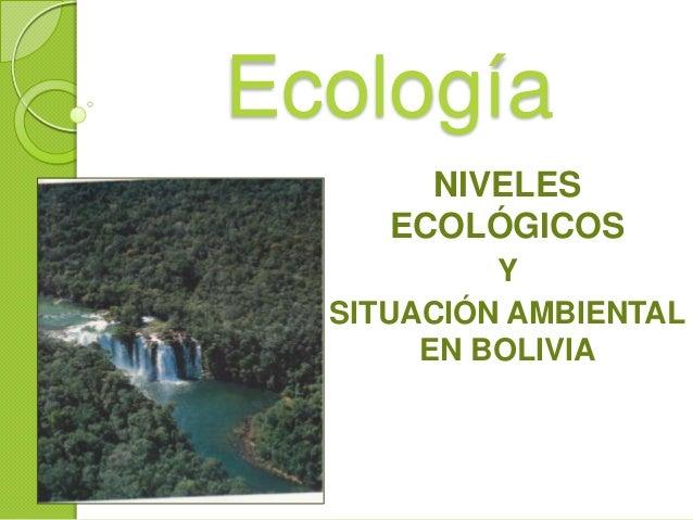 Ecología NIVELES ECOLÓGICOS Y SITUACIÓN AMBIENTAL EN BOLIVIA