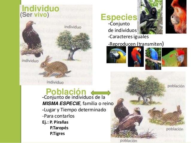 Ecologia y areas protegidas en Bolivia Slide 3