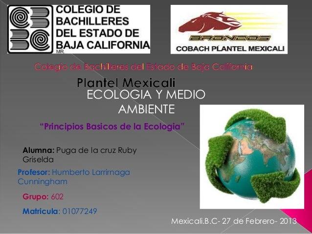 """ECOLOGIA Y MEDIO                     AMBIENTE     """"Principios Basicos de la Ecologia"""" Alumna: Puga de la cruz Ruby Griseld..."""