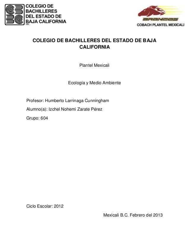 COLEGIO DE BACHILLERES DEL ESTADO DE BAJA                  CALIFORNIA                           Plantel Mexicali          ...