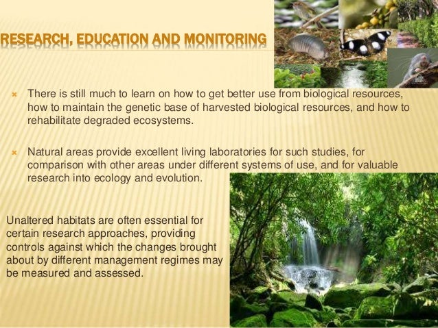 Ecological And Economical Importance Of Biodiversity