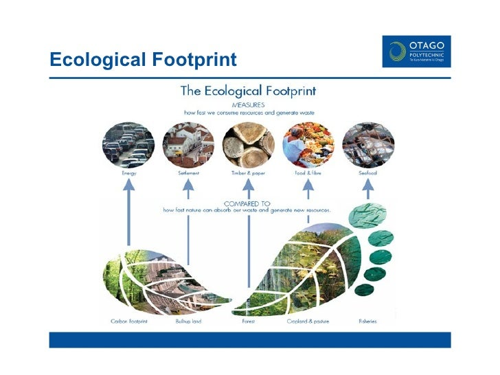 ecological footprint Wwf-australia embarks on a number of projects both within australia and globally to conserve the natural environment and to protect its wildlife.