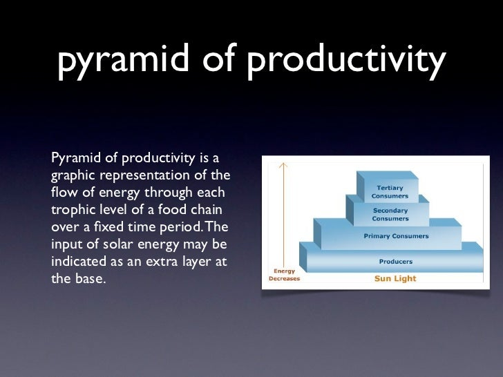 pyramid of productivityPyramid of productivity is agraphic representation of theflow of energy through eachtrophic level of...