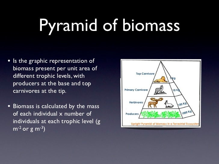 Pyramid of biomass• Is the graphic representation of  biomass present per unit area of  different trophic levels, with  pr...