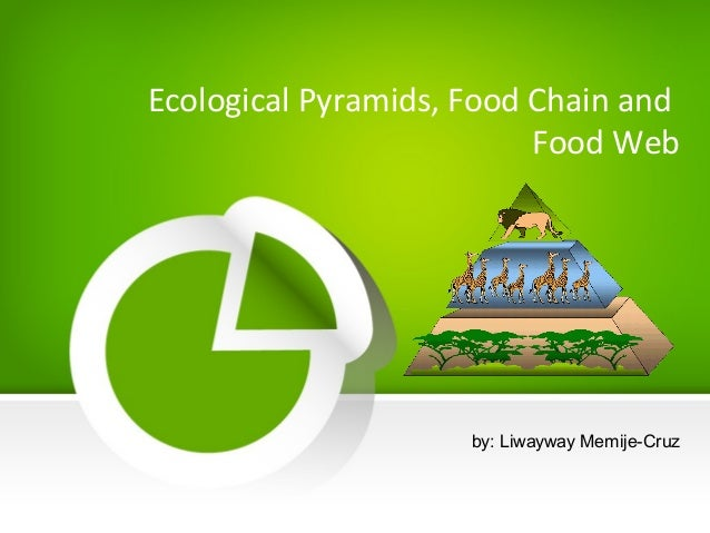 food chains food web ecological pyramids Food chains, food webs, and ecological pyramids a food chain is the simplest  food web a food web represents may interconnected food chains describing various.