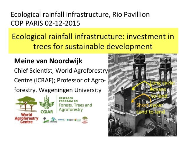 Ecological	rainfall	infrastructure:	investment	in	 trees	for	sustainable	development	 Ecological	rainfall	infrastructure,	...