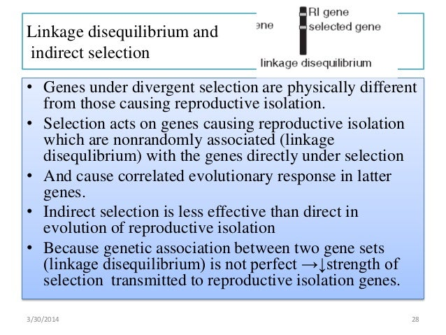 the effects of reproductive isolation What are the effects of isolation on human life  what are the psychological effects of long isolation and fear is the desire for an isolated life wrong.