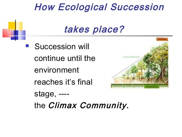 an overview of ecological succession 106 lesson 43 • lesson overview ecological succession involves changes that occur one after the other as species move into and out of a community y.