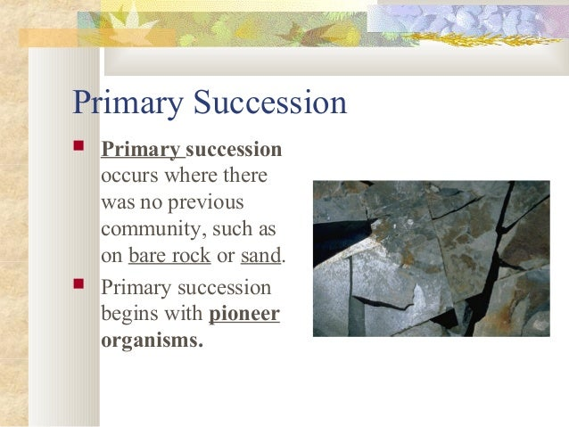 ecosystems ecological succession and climatic climax Ecological succession is the gradual process by which ecosystems change and develop over time nothing remains the same and habitats are constantly changing there are two main types of succession, primary and secondary.