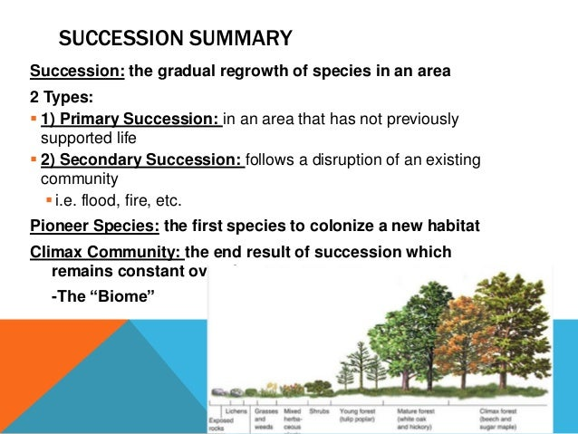 an introduction to succession This lesson covers succession in biology you'll learn the difference between  primary and secondary succession and look at some specific examples.