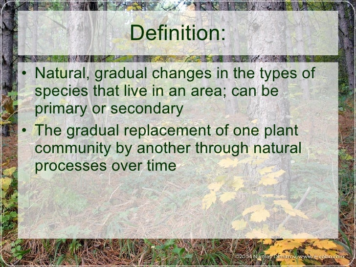 Ecological succession (1)