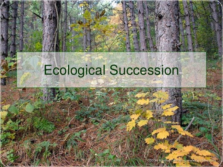 Ecological Succession<br />