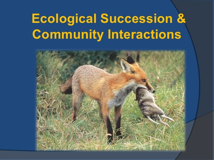 Ecological Succession &Community Interactions