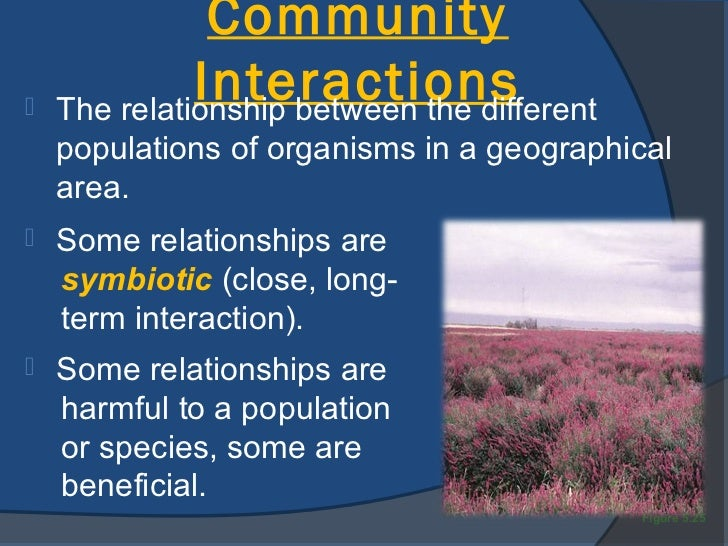 interacting amongst different communities Types of interactions interactions can be grouped into many categories –  sometimes the line is blurred between different types predation parasitism  competition.