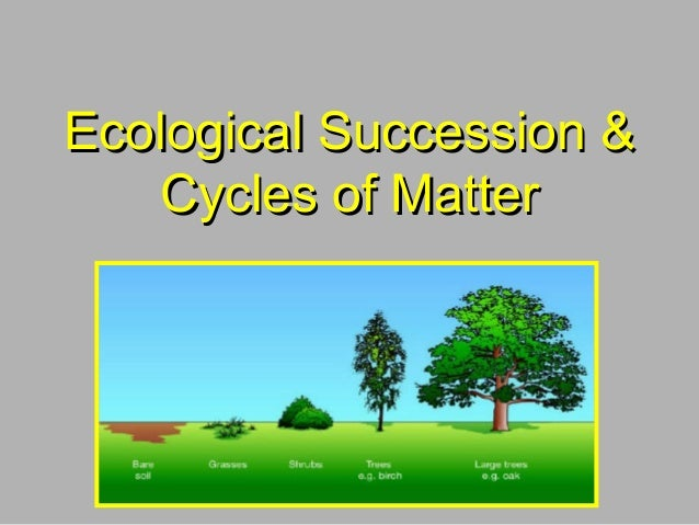 Ecological Succession &Ecological Succession &Cycles of MatterCycles of Matter